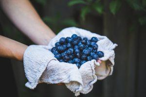 Naturopathic Doctors Guide to getting Blueberries in Gilbert, AZ